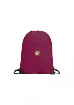 darton primary gym sac
